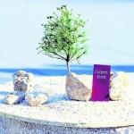 Steinquader, ein Baum sowie eine Gedenktafel sollen künftig den Gisbert-Beck-Kreisel zieren. Foto: Nietner