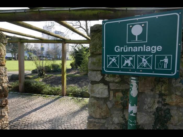 Mehr Pflege für die städtischen Grünanlagen fordert die CDU. Im Stadtgarten am Mainufer wurde vor einigen Wochen der Teich mit Erde verfüllt.Foto: Jens Etzelsberger