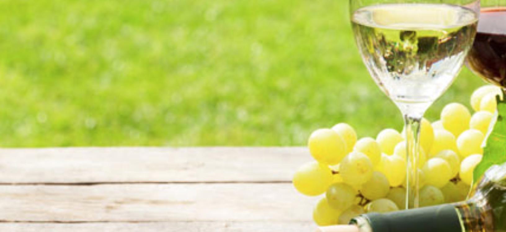 Weinprobe am 9. Juni im Flörsheimer Keller