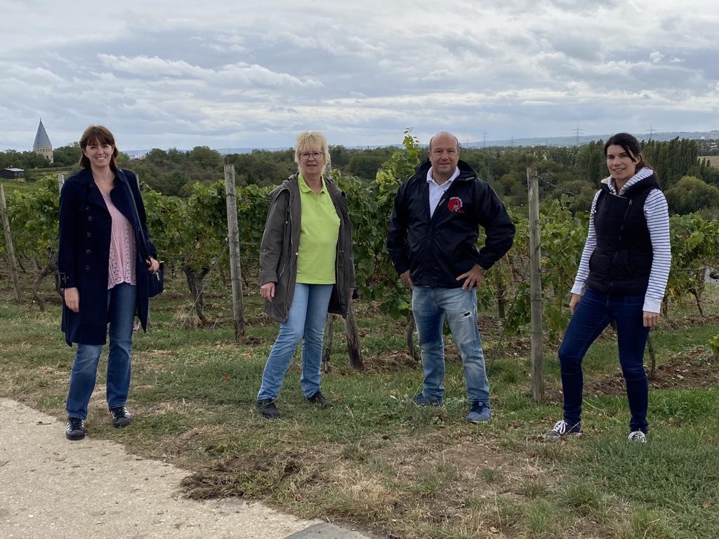 Vorstand der CDU in den Weinbergen unterwegs